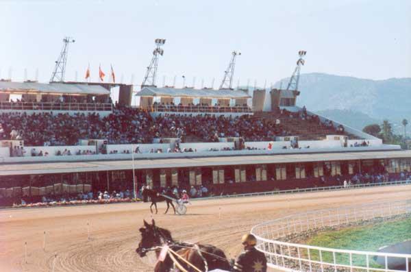 Hipodromo Son Pardo