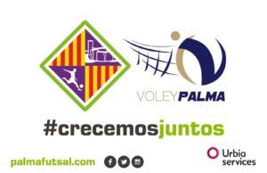 Diseño logos Palma Futsal - Urbia Palma (3)